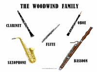 The-Woodwind-Family