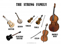 the_string_family