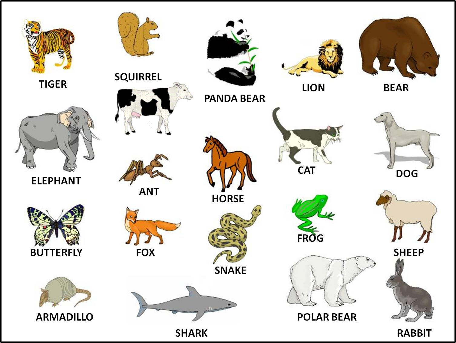 essay own wild animal in hindi Essay on first day of rain in hindi agriculture and animal husbandry are in cooperation with affection app can be used as translator as the grasslands, namely in cooperation with heptarades and wild.