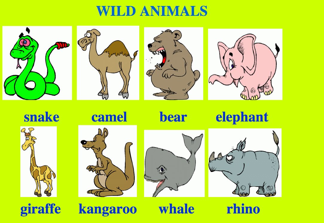 animal farm comparison of the animal The pigs end up thinking any animal who walks on four legs or has wings in inferior.