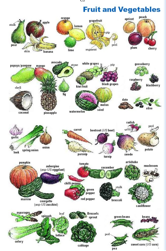 indian vegetables names glossary of vegetables in english